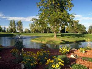 Hearthfire Homes For Sale Fort Collins