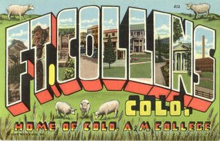 Fort Collins Real Estate Specialist